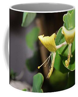 Pair Coffee Mug