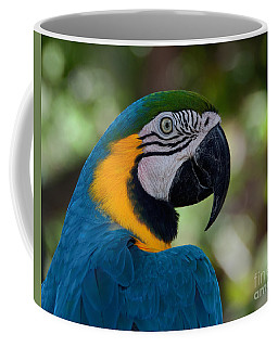 Coffee Mug featuring the photograph Parrot Head by Art Whitton