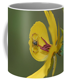 Partridge Pea And Matching Crab Spider With Prey Coffee Mug