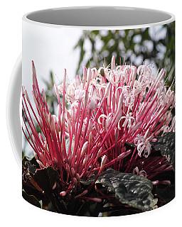 Passion For Pink Coffee Mug