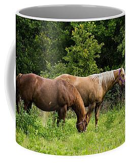 Pasture Time Coffee Mug by Doug Long