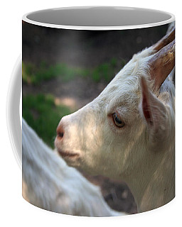 Coffee Mug featuring the photograph Patience Is A Virtue by Kay Novy