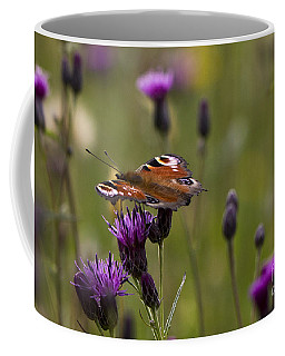 Peacock Butterfly On Knapweed Coffee Mug by Clare Bambers