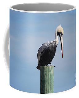 Pelican 1 Coffee Mug by Gordon Mooneyhan