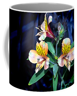 Peruvian Lily In My Garden Coffee Mug