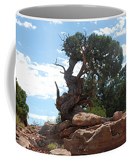 Coffee Mug featuring the photograph Pine Tree By The Canyon by Dany Lison