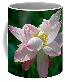 Pink Attraction Coffee Mug
