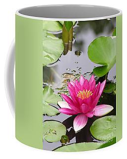 Pink Lily Flower  Coffee Mug