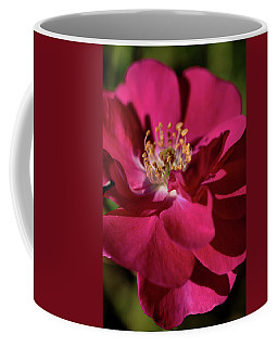 Coffee Mug featuring the photograph Pink Of Rose by Joy Watson