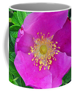 Coffee Mug featuring the photograph Pink Portulaca by Tikvah's Hope