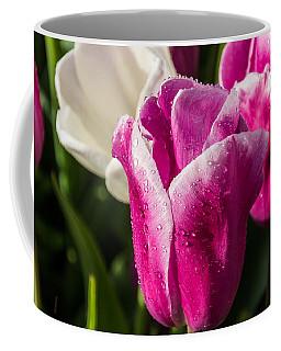 Coffee Mug featuring the photograph Pink Tulip by David Gleeson