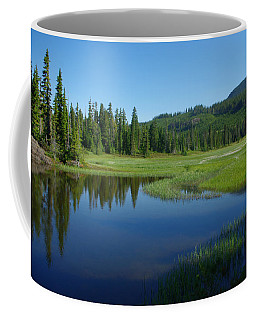 Pond Reflection Coffee Mug