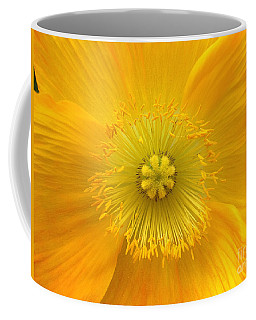 Poppy 2 Coffee Mug
