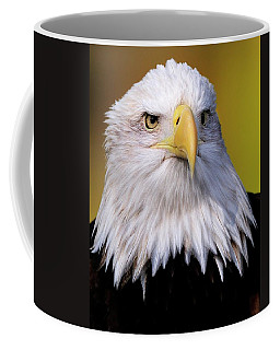 Portrait Of A Bald Eagle Coffee Mug