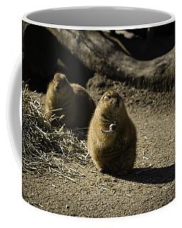Prairie Dog Sees The Shadow Coffee Mug