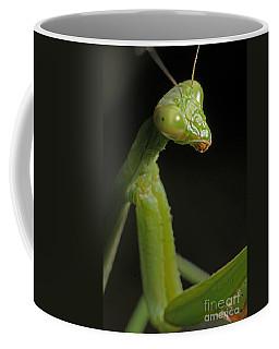 Praying Mantis Coffee Mug by Art Whitton