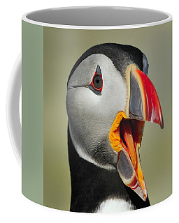 Puffin Portrait Coffee Mug