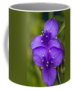 Purple Spiderwort 1 Coffee Mug