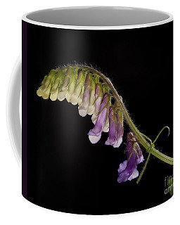 Coffee Mug featuring the photograph Purple Vetch by Art Whitton