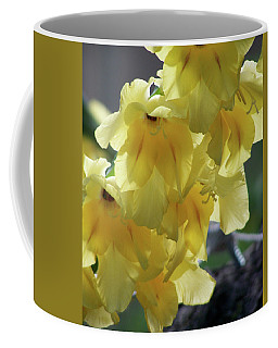 Coffee Mug featuring the photograph Radiance by Thomas Woolworth