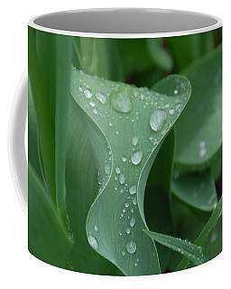 Raindrops Coffee Mug by Aimee L Maher Photography and Art Visit ALMGallerydotcom
