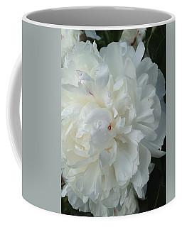 Rarely Perfect Coffee Mug