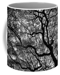 Reaching To The Heavens Coffee Mug