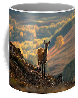 Red Deer Calf Coffee Mug