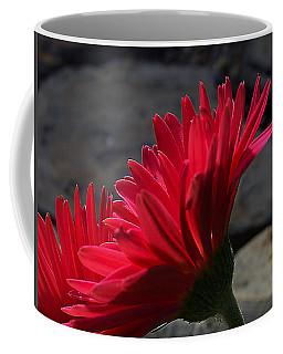 Coffee Mug featuring the photograph Red English Daisy by Joe Schofield