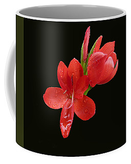Coffee Mug featuring the photograph Red Flower by Lynn Bolt