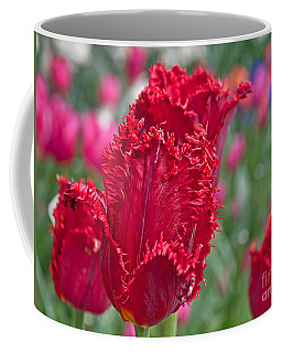 Red Fringed Tulip Flower Macro Art Prints Coffee Mug by Valerie Garner