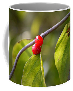 Red Fruits Coffee Mug