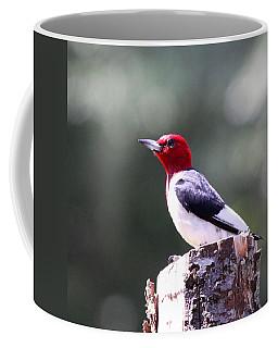 Red-headed Woodpecker - Statue Coffee Mug