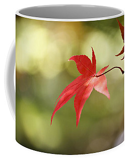 Coffee Mug featuring the photograph Red Leaf. by Clare Bambers