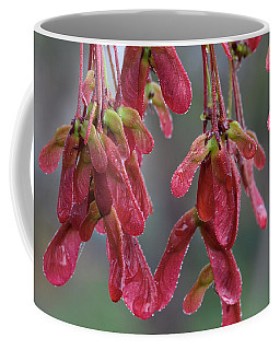 Red Maple Keys With Raindrops Coffee Mug