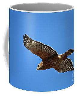 Red Shouldered Hawk In Flight Coffee Mug