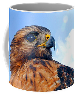 Coffee Mug featuring the photograph Red Shouldered Hawk Portrait by Dan Friend
