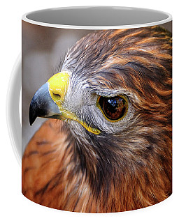 Red-tailed Hawk Close Up Coffee Mug