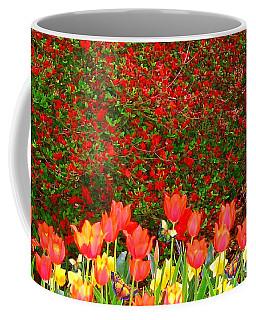 Red Tulip Flowers Coffee Mug