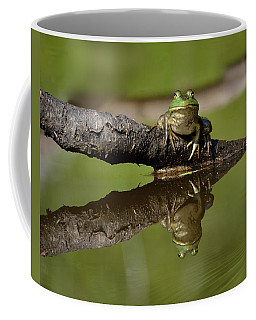 Reflecktafrog Coffee Mug by Susan Capuano