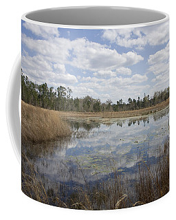 Reflections Coffee Mug by Lynn Palmer