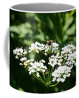 Refractions Coffee Mug