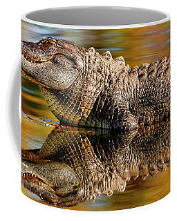 Relection Of An Alligator Coffee Mug