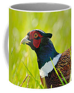 Ring Neck Pheseant Coffee Mug