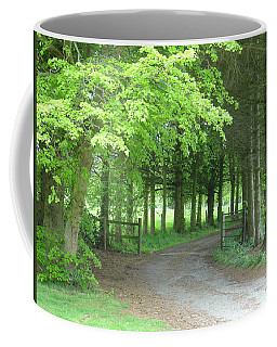 Road Into The Woods Coffee Mug