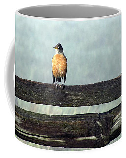 Coffee Mug featuring the photograph Robin In The Mist. by I'ina Van Lawick