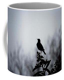 Robin In The Morning Fog Coffee Mug