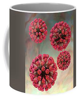 Rubella Virus Particles Coffee Mug