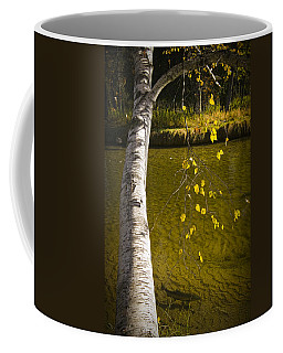 Salmon During The Fall Migration In The Little Manistee River In Michigan No. 0887 Coffee Mug