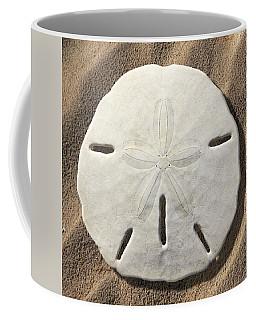 Sand Dollar Coffee Mugs